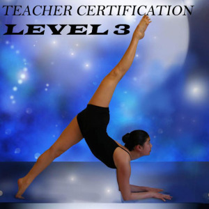 Certification – Level 3